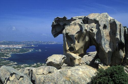 The bear, Palau, Sardinia, Italy - 00698HS