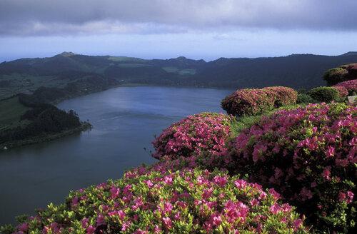 Azores, Sao Miguel, Furnas valley - 00016HS