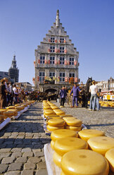 Stadhuis,town hall, weekly cheese market,Netherlands - MS01403
