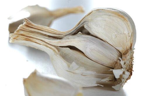 Clove of garlic - AS01010