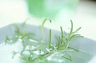 Herb bath - 00526AS