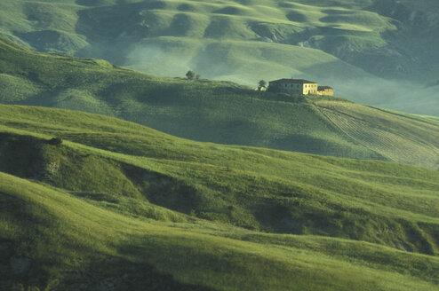 Italy, Tuscany - 00192GS