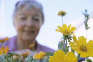 Senior woman - PEF00322