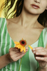 Woman plucking petals from flower, close up - LDF00011