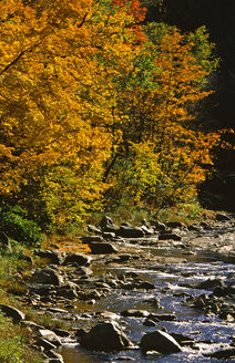 USA, Vermont, Green Mountains - HS00902