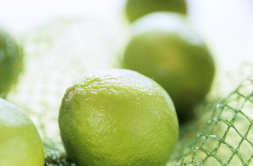 Limes in net, extreme close up - 00660AS