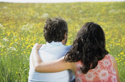 Couple sitting in meadow, rear view - LDF00072