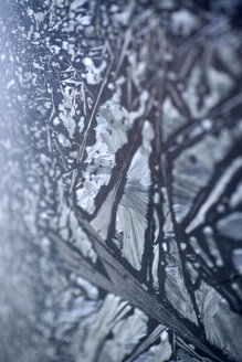 Ice crystalls, extreme close up - MNF00064