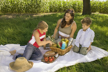 Mother with daughter and son at picnic - CKF00126