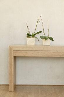 Shelf wit two flower pots - BMF00211