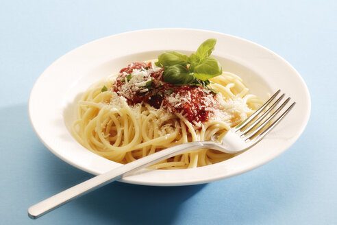Spaghetti with tomato sauce, close-up - 02866CS-U