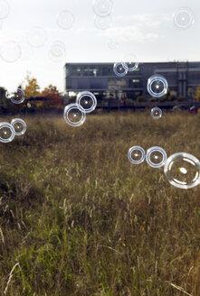 Soap bubbles - KM00121