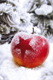 Christmas apple with snow, close-up - 03567CS-U