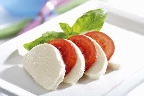 Mozzarella cheese with tomatoes and basil, close-up - 04047CS-U