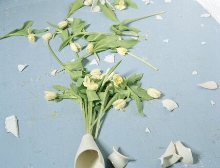 Broken vase and flowers on floor - DBF00002