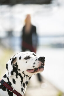 Woman with dalmatian dog - KM00143