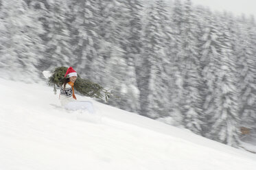 Woman riding on sledge, carrying Christmas tree - HHF00546