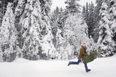 Man in snow, carrying Christmas tree - HHF00528