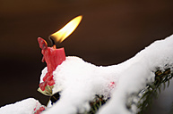 Burning candle on Christmas tree covered with snow, close-up - HHF00519
