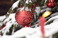 Christmas tree covered with snow, close-up - HHF00516