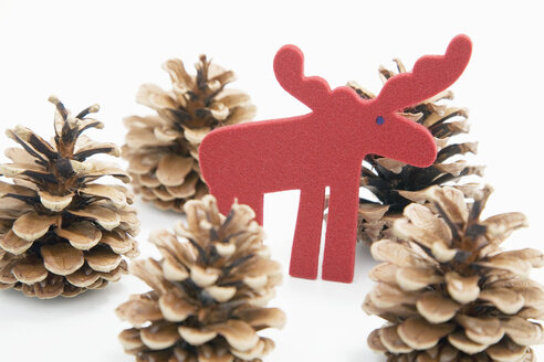 Christmas decoration with fir cones and felt elk - GWF00329