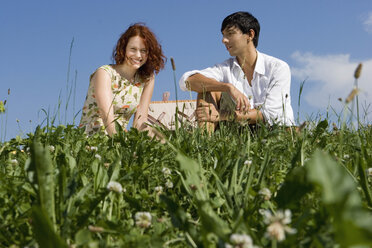 Young couple on picnic blanket - LDF00208