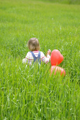 Girl ( 3-4 ) holding bunch of balloons, walking in meadow, rear view - SMOF00089