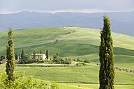 Italy, Tuscany, landscape - MRF00786