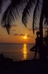 Woman Standing By Palm Tree - GNF00891