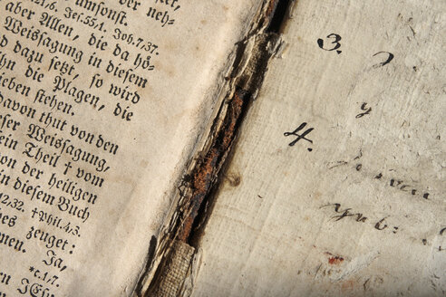 Close-up of text in the Bible - TL00106