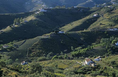 Spain, Andalusia, landscape - HS00995