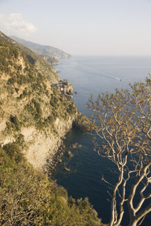 Italy, Liguria, Vernazza, Ligurian Sea - MRF01017