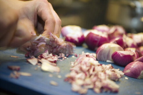 Person chopping red onions - HKF00142
