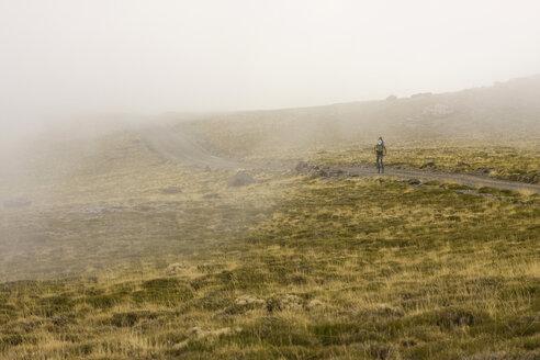 Spain, Sierra Nevada, mountainbiker on the way - FFF00874