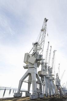 Germany, Hamburg harbour, container cranes - SEF00043