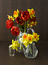 Daffodils and tulips in vases - KSWF00092