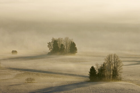 Germany, Bavaria, Murnau, Misty landscape - FOF00506