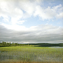 Finland, Hossa National Park, Lake under cloudy sky - PM00522