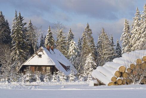 Germany, Black forest, Breitnau, Schwarzwaldhaus, Winter scenery - SHF00209
