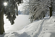 Germany, Black forest, Mummelsee, Winter scenery - SHF00206