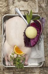 Raw duck in roasting tin, elevated view - SC00191