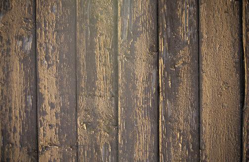 Limber wall, full frame - PMF00585