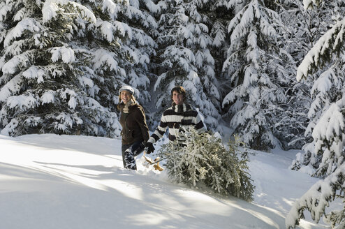 Austria, Salzburger Land, Altenmarkt, Young couple in snowscape, transporting fir tree - HH02596