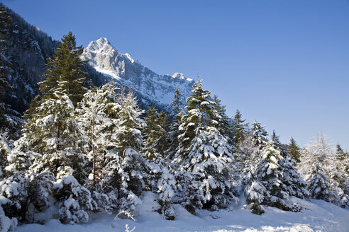 Germany, Bavaria, Winter scenery in the background Wetterstein mountains - FOF00784