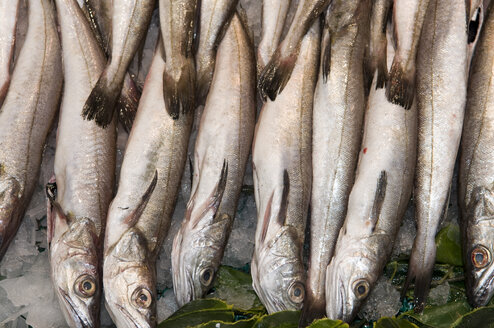 Spain, Madrid, Fish Hanging in the Market - AWDF00053