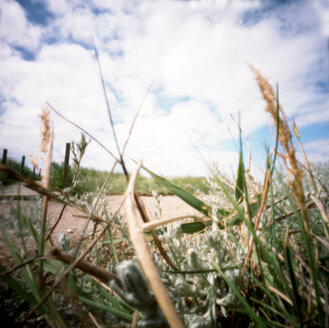 Germany, Amrum, Landscape, (pinhole camera) - AWD00060
