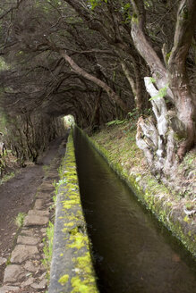 Portugal, Madeira, Levada, traditional Canal irrigation - GA00089