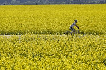 Germany, Bavaria, Oberland, Woman mountain biking across rape field - DSF00096
