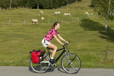 Germany, Bavaria, Mittenwald, Woman mountain biking, flock of sheep in background - DSF00003