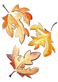 Illustration, Three autumn leaves - KTF00009